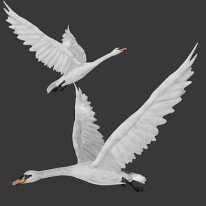 Fully rigged low poly flying swan 3D model