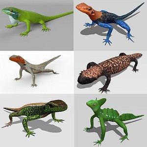 Lizards bundle 3D model