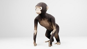 ape cartoon 3D model