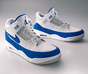 3D Nike Air Jordan 3 Sneaker