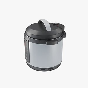 Multicooker model