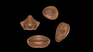 3D model facial element Low-poly