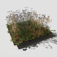 Cornflower Meadow Patch