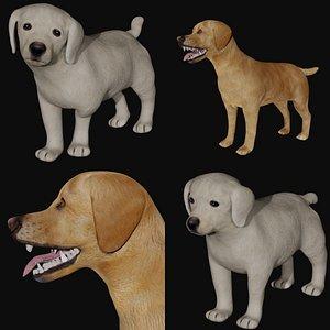 3D Labrador and puppy Labrador model