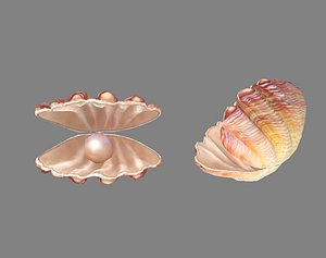 Pearls and shells - mussels 3D model