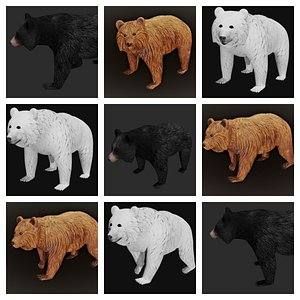 bear rigged model
