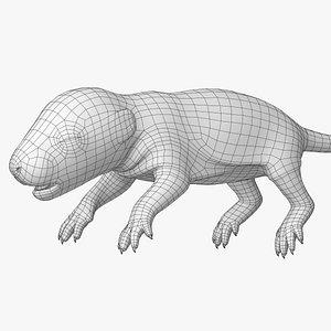 3D model Rat Baby Newborn Lowpoly