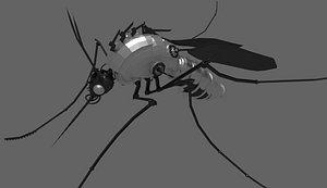 mosquito mechanical mech 3D