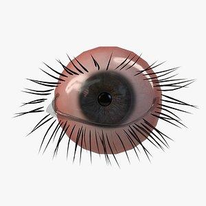 3D Realistic PBR Eye Set 8 Pieces