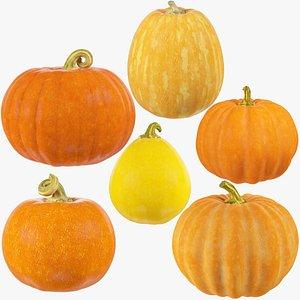 3D model Pumpkins Collection V1