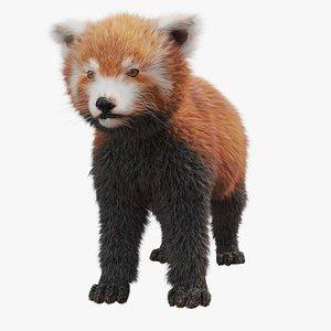 3D Red Panda model