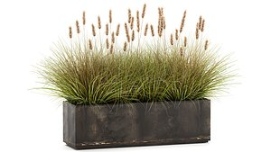 Reeds in a Flowerpot for the interior 904 3D model