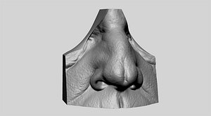 nose head face 3D