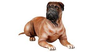 3D bullmastiff dog