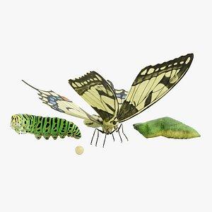 caterpillar egg 3D model