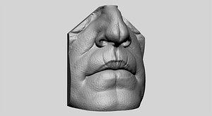 nose male model