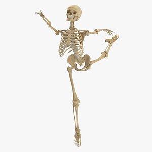 3D Real Human Female Skeleton Pose 86(1) model