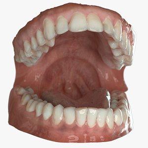 dentures C 3D model
