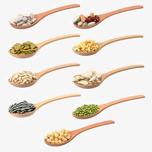 Wooden Spoons with Seeds Collection 2 3D model