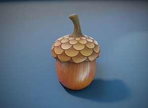 cartoon acorn toon model