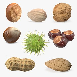 3D Nuts Collection 8