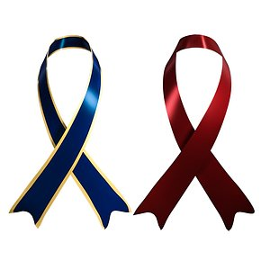 3D Breast Cancer Awareness Ribbbon model