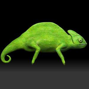 Green Chameleon 3D model