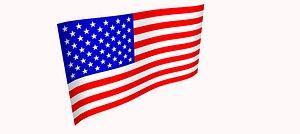 US Flag 3D model