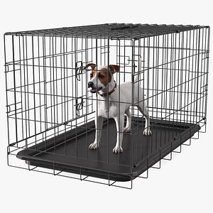 3D Kennel Cage with Jack Russell Terrier Fur