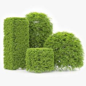 shaped Bush plants V02 model