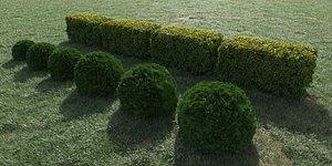 3D model bushes hedge shrub