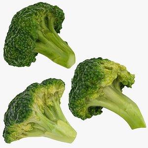 3D model broccoli florets