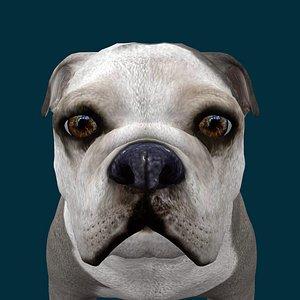 0044 Dog 3D