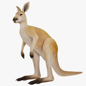 Kangaroo model