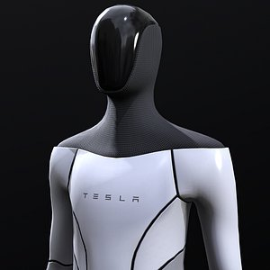 tesla bot 3D model