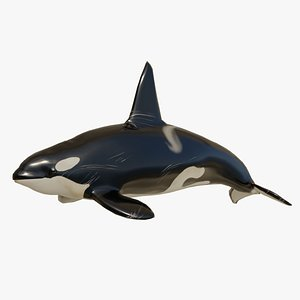 rigged animal killer whale 3D model