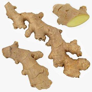 Ginger Set 02 3D model