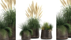 3D reeds and grass in a Flowerpot for the interior 920