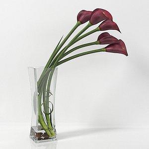 Calla lily  06 3D model