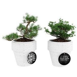 3D model nature tree
