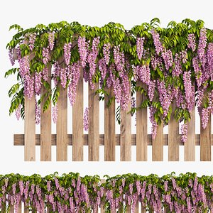 3D wisterial plant model