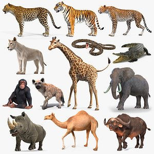 3D Rigged African Animals Collection 10