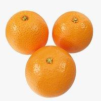 Oranges 04-06 Hi Poly