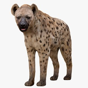 hyena rigged fur 3D model