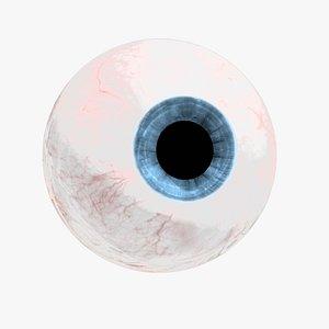 3D Eyeball model