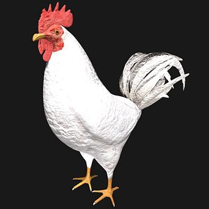 3D model rooster hen rigged