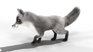 Fur Gray Fox Rigged Model model
