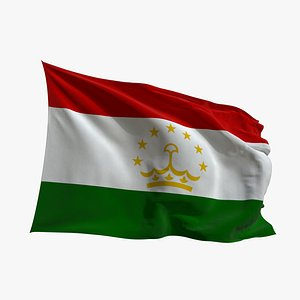 3D Realistic Animated Flag - Microtexture Rigged - Put your own texture - Def Tajikistan