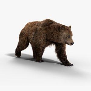 bear female 3D model