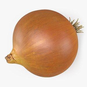 3D Whole Onion model